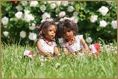 Sommeranfang mit den Minis ... (Kindergartenkinder) Tags: dolls himstedt annette frühling park blume garten kindergartenkinder essen grugapark blumen rosen leleti