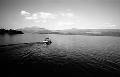 (David Gaborit) Tags: rolleiretro80s studional leicam3 amedeoadapter carlzeissbiogon21mmf45 noiretblanc blackandwhite blancoynegro ecosse scotland luss