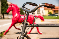 When did the bike overtake the horse? (Phototravelography) Tags: bicycle ironhorse old steelhorse trustysteed vintage drahtesel red meaning street