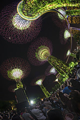 Celebrate Gardens by the Bay's 5th anniversary! GARDENS EXTRAVAGANZA SPECIAL largest drone display in Singapore (gintks) Tags: gintaygintks gintks gardensbythebay gbtb singaporetourismboard exploresingapore yoursingapore gardenbythebay