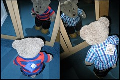 They both fit - I'll take 'em! (pefkosmad) Tags: collage tedricstudmuffin teddy bear ted clothes shirts poloshirt shirt new duds fitting tryingon cute stuffed toy animal holibobs holiday vacances vacation fluffy plush softie mirror lookingglass