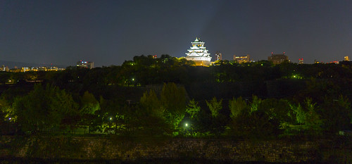 OsakaJo at Night...