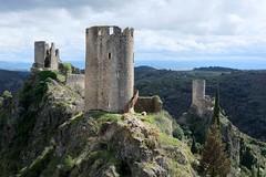 Les châteaux de Lastours (Philippe_28) Tags: lastours ruines châteaux ruins 11 aude france europe tour cathare cabaret regine surdespine quertinheux castle