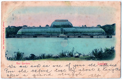 London - Kew Gardens (pepandtim) Tags: postcard old early nostalgia nostalgic london kew gardens stengel dresden berlin 26031904 1904 45lkg32 baker post st albans undivided back oxford grand struggle lake greenhouse conservatory alf office university cambridge river thames putney mortlake club president injury former rower frederick pitman lengths