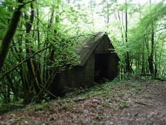 autour Le Ruisseau de Foulissard (Jan Jelle Koerts) Tags: wood foret limousin france frankrijk bos