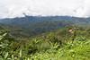 IMG_8937-1 (jessypub) Tags: 沙巴 神山 京那巴魯山 kinabalu 馬來西亞 canon 6d sabah malaysia 2017 summit