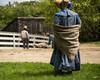 Bo Beeps Found Sheep (SnapSnare) Tags: old sturbridge village 2017 wool weekend sheep shear