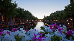 Amsterdam. (alamsterdam) Tags: amsterdam flowers sunset longexposure canal keizersgracht boats reflection cars bridge lampposts