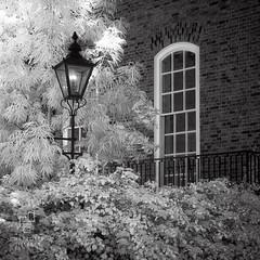 Temple Gas (www.charlottegilliatt.com) Tags: infrared london ir gaslamp gaslight