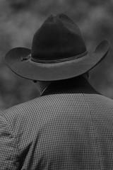 (M.J.H. photography) Tags: cowboyhat man judge ebony ebonyhorsewoman