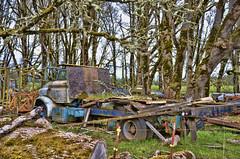 End of The Road (creepingvinesimages) Tags: htt truck abandoned farm junk debri rust outdoors washington county oregon nikon d7000 pse14 topaz