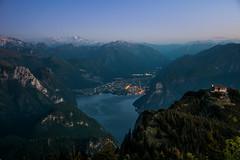 Night vs day (Fratercula arctica) Tags: gmunden oberösterreich österreich at city mountain traunsee gmunderhütte naturfreundehaus naturfreundesteig wandern hiking klettersteig