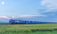 Blue Train Running (BackOnTrack Studios) Tags: pimk rail 07 077 07077 ludmill diesel locomotive blue freight train cargo nova zagora trains railway railways bulgarian bulgaria te109 5d49