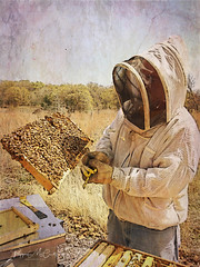 The Beekeeper (peppermcc) Tags:
