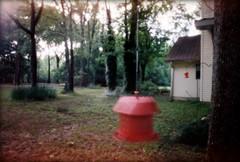 Spinning Feeder - WPPD (wizowel) Tags: 35mm film kodak ondu pinhole portra400 wppd