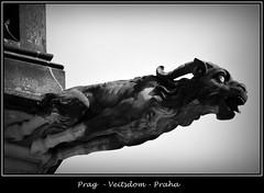 Gargoyles - 17 (fotomänni) Tags: prag praha prague veitsdom gargoyles wasserspeier steinfiguren skulpturen skulptur sculpture kunst schwarzweis blackwhite noirblanc gargouille manfredweis