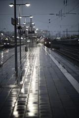 Baureihe 218 - München Ostbahnhof (memories-in-motion) Tags: baureihe 218 münchen ost regen gewitter railay station zug train track 11 bluehour public transport oberleitung headlights railway munich bahnhof canon eos 85mm ef85mmf12liiusm f12 dof trace light dark