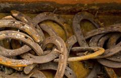 horse_shoe_0517 (cczendragon) Tags: horseshoes rust group monochrome