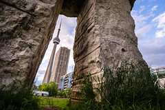 Welcome to the jungle (Lee Chu) Tags: project365 rokinon12mmf20ncscs sonynex6 toronto ontario canada cntower