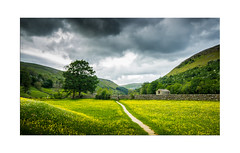 Glorious Swaledale! Explore 10.06.2017 - No.24 (muddybootsuk) Tags: swaledale sssi meadows muker yorkshire dales summer wildflowers farming haymeadows livestock barns stonebarn drystonewall fields clouds landscape england muddybootsuk greatbritain unitedkingdom north riding grimupnorth trees canon 600d velbon hay