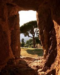 Fabolous point of view!! #like #follow #montalcino #borghetto #siena #tuscany #discover #travel #enjoy #nature #landscape 😍 (borghettob) Tags: like follow montalcino borghetto siena tuscany discover travel enjoy nature landscape
