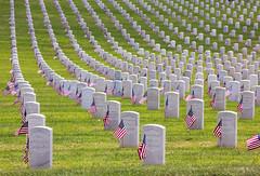 los angeles memorial day (Karol Franks) Tags: losangeles national cemetery veteran memorial day headstones rip honor patriotism america usa war loss