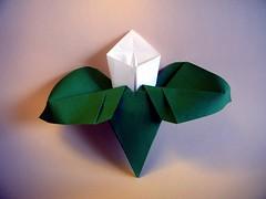Arum - Nilva Pillan (Rui.Roda) Tags: origami papiroflexia papierfalten flor fiore fleur flower nilva pillan