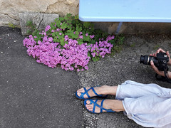 pieds orteils banc tamron canon fleurs flowers chaussures... (Photo: Thierry.Vaye on Flickr)