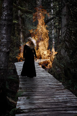 burning bridges (wild_empress) Tags: wildempress vanessaskotnitsky veddermountain bookcoverphotography selfportraitartist introvert intj intjfemale compositephotography digitalmanipulation