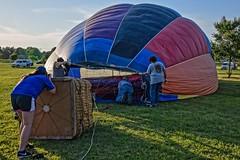 Balloon Inflation Process:  Man Inside (brev99) Tags: tulsa tulsaballoonfestival d610 hotairballoons balloonists crew viewnx2 cacorrection snapheal macphun perfecteffects17 ononesoftware on1photoraw2017 tamron28300xrdiif