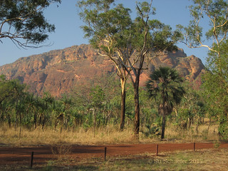 Morning light on escarpment country: Keep River NP
