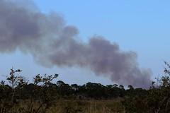 WILDFIRE!! (Jan Nagalski) Tags: fire wildfire smoke black blacksmoke florida titusville merrittisland atlanticcoast marsh saltmarsh trees jannagalski jannagal