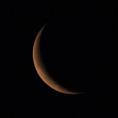 20170523_IMG_9382_trm (NAMARA EXPRESS) Tags: astronomy moon luna age263 satellite universe space star night spring fine outdoor color toyonaka osaka japan canon eos 7d tamron sp 70300mm f456 namaraexp