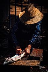 The Fisherman (Riccardo Maria Mantero) Tags: mantero market riccardo maria fish fisherman hands marrakech morocco people travel working riccardomantero riccardomariamantero