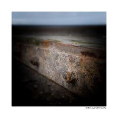 groyne..... (bevscwelsh) Tags: sea sand beach groyne x100f northwales
