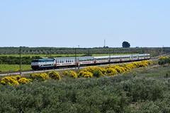 E444 090 Tartaruga (luciano.deruvo) Tags: ic612 intercity e444090 trenitalia ferroviedellostato