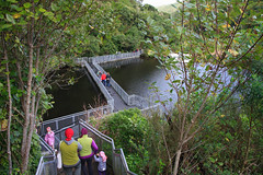 Zealandia (Jose David) Tags: dam nature newzealand outdoors wellington zealandia