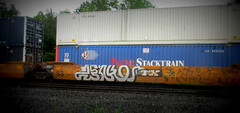 zenko (timetomakethepasta) Tags: zenko ivy league ttx intermodal freight train graffiti art benching selkirk new york photography