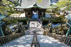 Naritasan Shinshoji IX (Douguerreotype) Tags: japan narita buddhist temple shrine architecture people stairs steps buildings gate pond water fountain graveyard