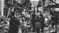 ... prima passa ru Capu (Angelo Trapani) Tags: palermo capo market mercato gente tradizioni verdura pesce putiaru putia street frutta