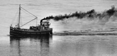 Scotland Greenock Clyde Puffer VIC 32 steam cargo ship heading for Argyll 19 May 2017 by Anne MacKay (Anne MacKay images of interest & wonder) Tags: scotland greenock clyde puffer vic 32 steam cargo ship river monochrome blackandwhite xs1 19 may 2017 picture by anne mackay