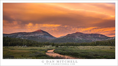 Evening Clouds, Sierra Crest (G Dan Mitchell) Tags: mount gibb dana meadow fork tuolumne forest mountains sunset colorful sky clouds thunderstorms dissipating evening yosemite national park sierra nevada nature wilderness landscape