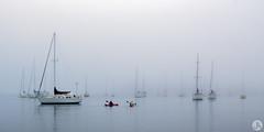 Into the mist (John_Armytage) Tags: fog mist portmacquarie midnorthcoastnsw nsw australia johnarmytage yacht boat sonya7r2 sony1635 sonyalpha