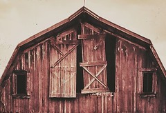 weathered and worn... (HWW) (BillsExplorations) Tags: windowwednesday window weathered abandoned ruraldecay decay old forgotten barn farm illinois door dairybarn