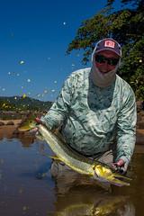Bicuda - Pike Characin - Kendjam (Kendjam - The Kayapo Legacy) Tags: tribe southamerica rainforest kendjam kayapo iriri brazil amazon jungle untamed untamedangling