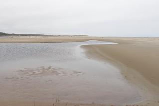 Tenmile Creek dead ends in the sand