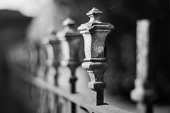 Royal Dreams (Thomas Listl) Tags: thomaslistl blackandwhite noiretblanc biancoenegro 50mm minolta x700 conversion fence bokeh hff grey silver