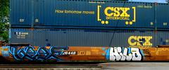 beef - hilo (timetomakethepasta) Tags: beef hilo vrs eerie vowel new year freight train graffiti art csx intermodal benching selkirk york photography