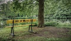 Like it a log (Jorden Esser) Tags: denhaag doyoulovetolive haagsebos marskramerpad thehague bench benchmonday graffiti grass hbm log park pond text tree whiteflowers nederlandvandaag yellow green law3 leg01