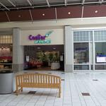 Center at the Mall thumbnail